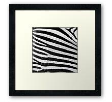 Zebra Pattern Framed Print