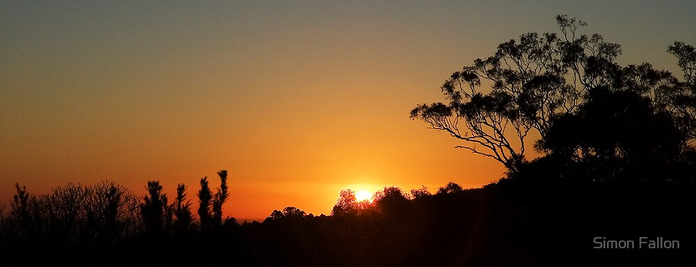 Bunya Sundown by Simon Fallon