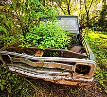 Old Chevy by Emily Hild