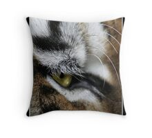 Hunters Eye Throw Pillow