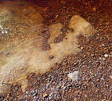 Iron Stones - Aysgarth Falls by Keiron Allen