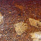 Iron Stones III - Aysgarth Falls by Keiron Allen