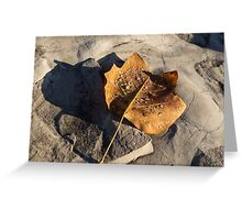 Tulip Tree Leaf – Frozen Raindrops in the Sunshine Greeting Card
