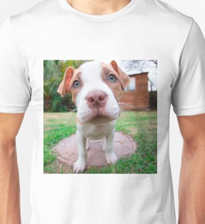cute pit bull dog brown nose close Unisex T-Shirt