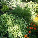 flower gardens by oilersfan11