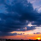 I follow the sun by MarianBendeth