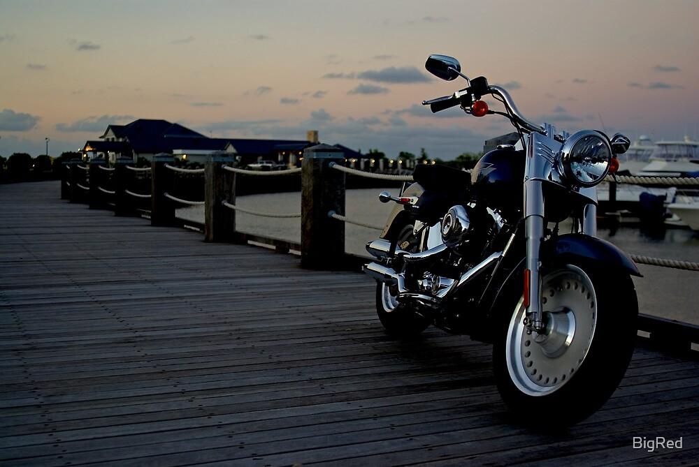 Harley by BigRed