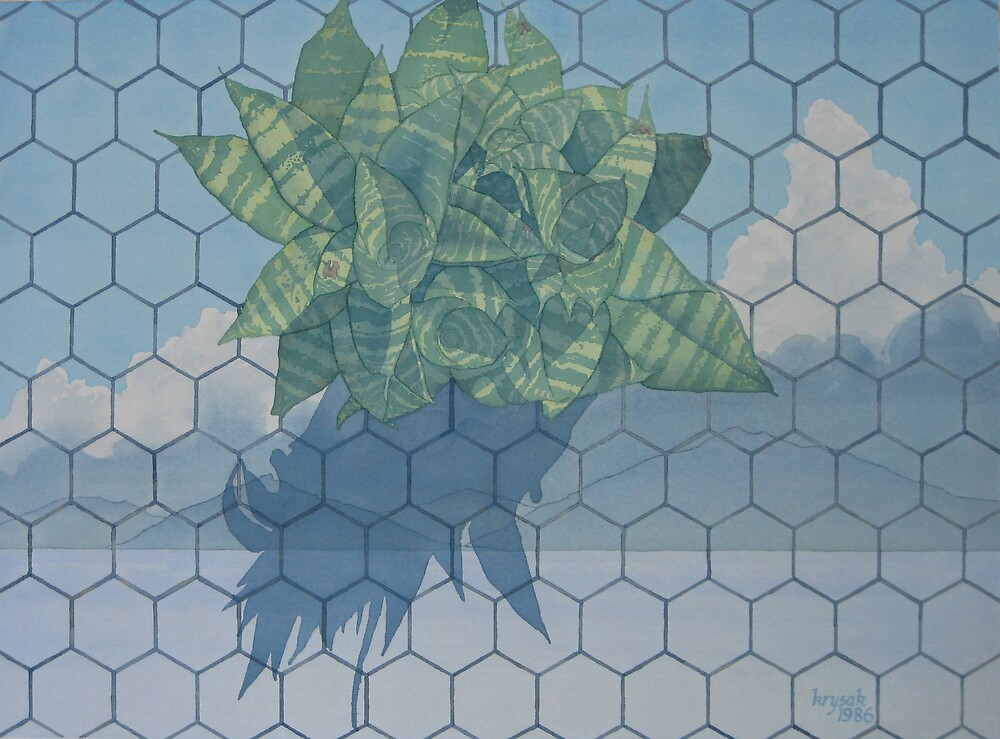 Plant On Ceramic Tile by Terry Krysak