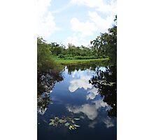 swamp water Photographic Print
