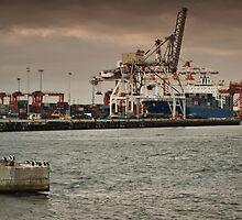 Fremantle Wharf, Western Australia by Scott G Trenorden