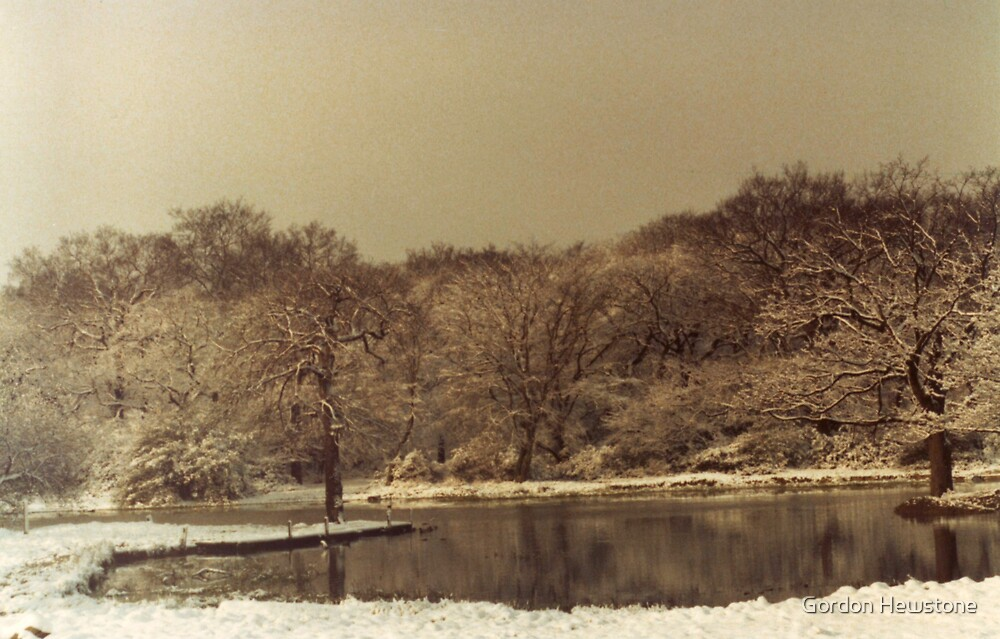 Rising Sun Boating Lake in Winter by Gordon Hewstone