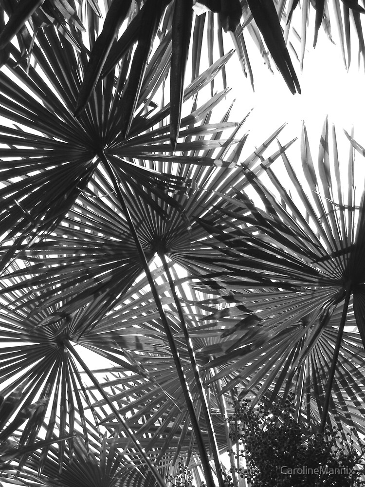 Victorian Palm by CarolineMannix