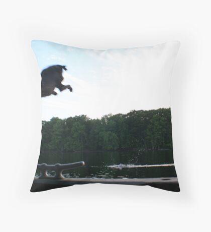 Air Ranger Throw Pillow