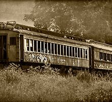 Forgotten Train by Dawn Crouse