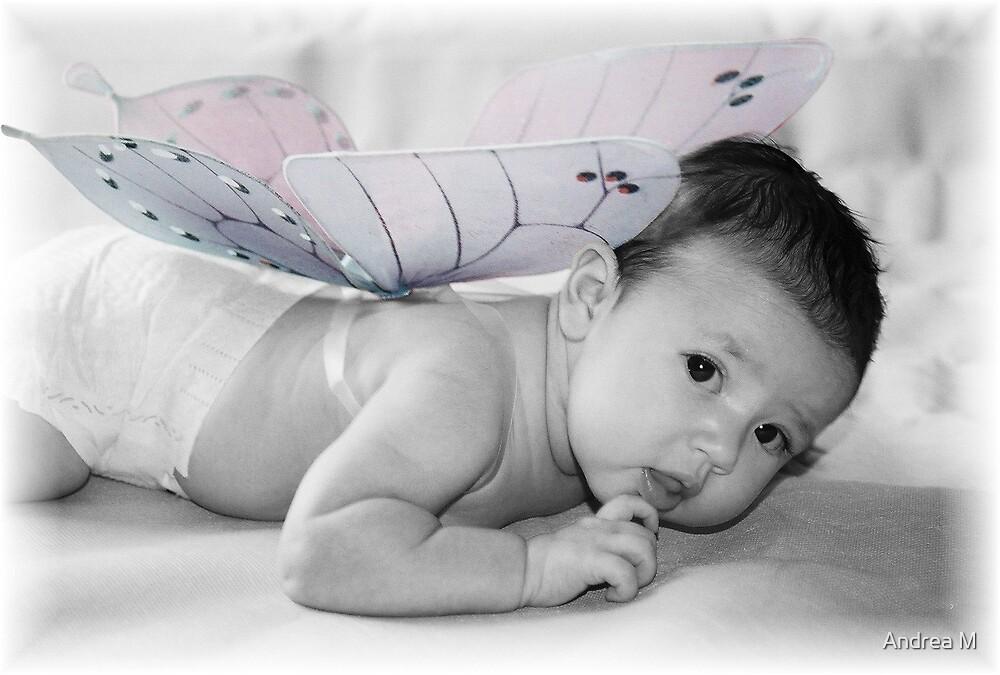 My little Butterfly by Andrea M