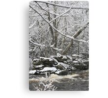 Streaming Winter Canvas Print