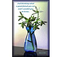Just Thinking ~ My Best Friend Photographic Print