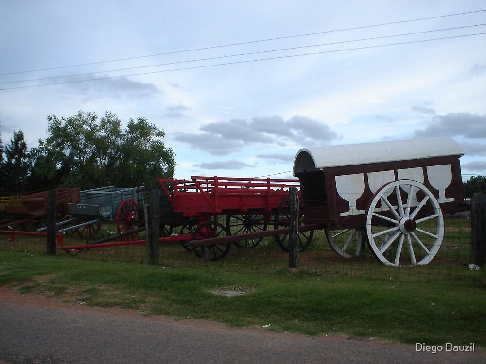 forgotten wagons  by Diego Bauzil