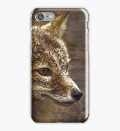 Focused Fox iPhone Case/Skin