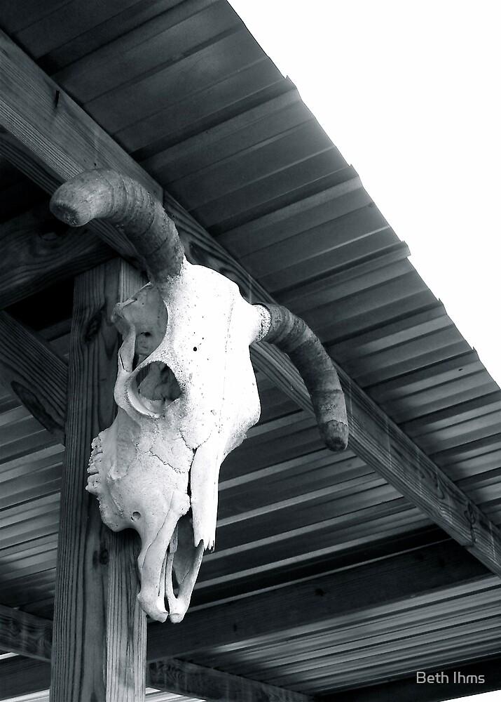 Bone Dry by Beth Ihms