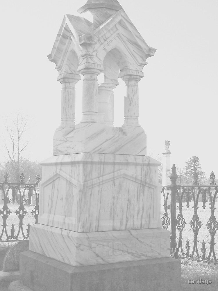 Oakwood Cemetary III by candays