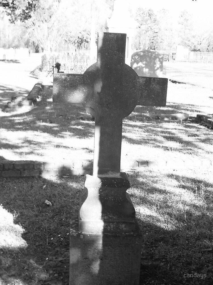 Oakwood Cemetary VI by candays
