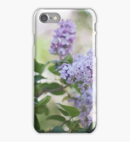 Summer Lilacs iPhone Case/Skin