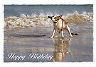 Birthday Card No 2 by Helen Green