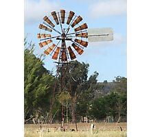 Windmill in Paddock Photographic Print