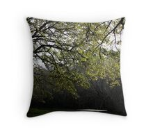 Picnic Spot Throw Pillow