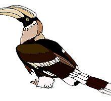 Hornbill by kwg2200