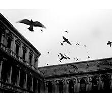 Bombing Piazza San Marco Photographic Print