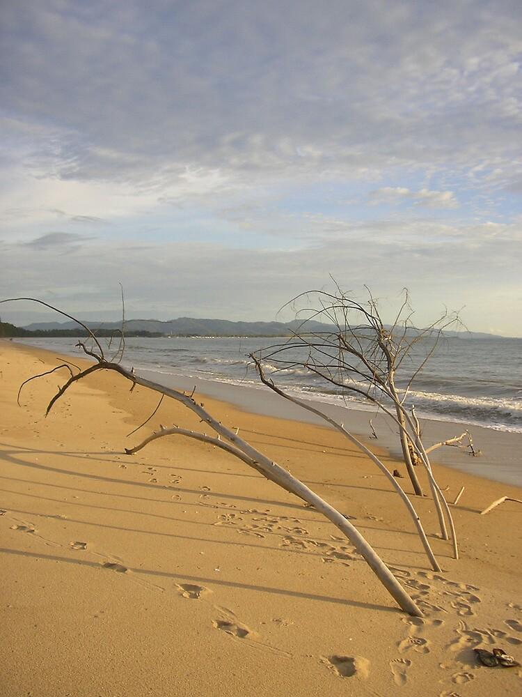 Thai Beach by Amy Dawes
