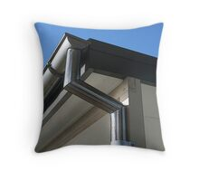 Stainless Throw Pillow