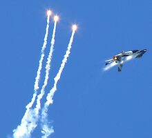 f16 fighting falcon by paul777