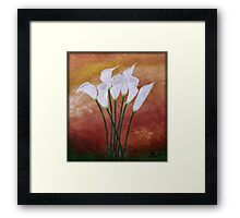 Cala Lily's Framed Print