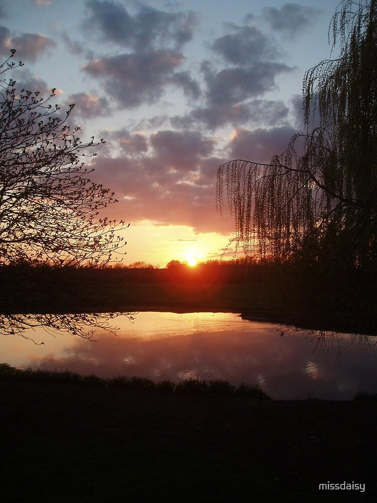 sun setting by missdaisy