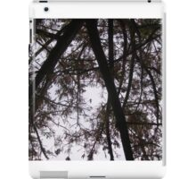 A Walk in the Park - Looking Up iPad Case/Skin