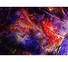 Velvetine Photographic Print