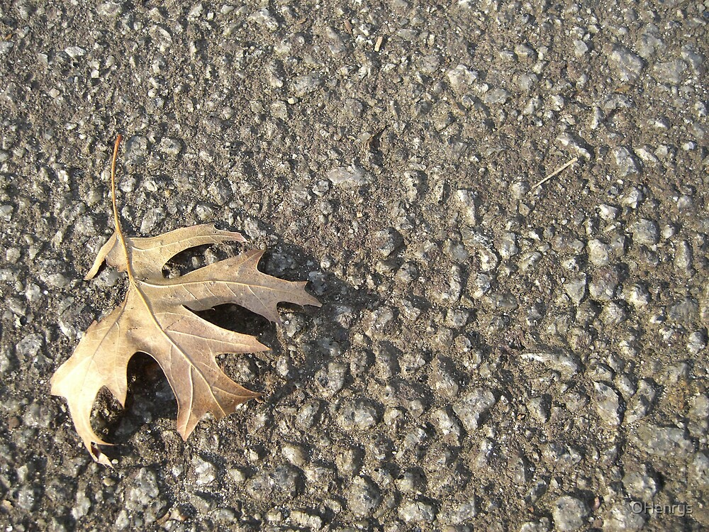 Leaf on Rough Surface BLC by OHenrys