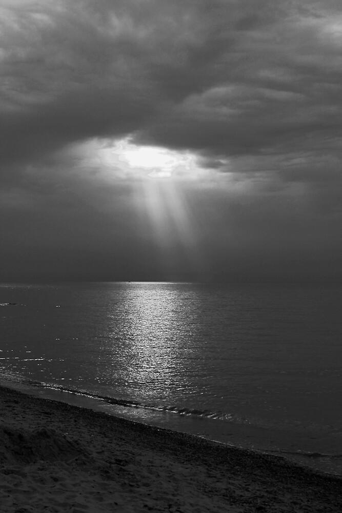 Untitled by Jeremy Davis