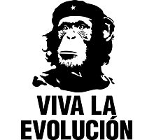 Viva La Evolution Photographic Print