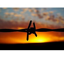 Barbed Sun Photographic Print