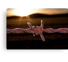 Wire'n'ice Canvas Print