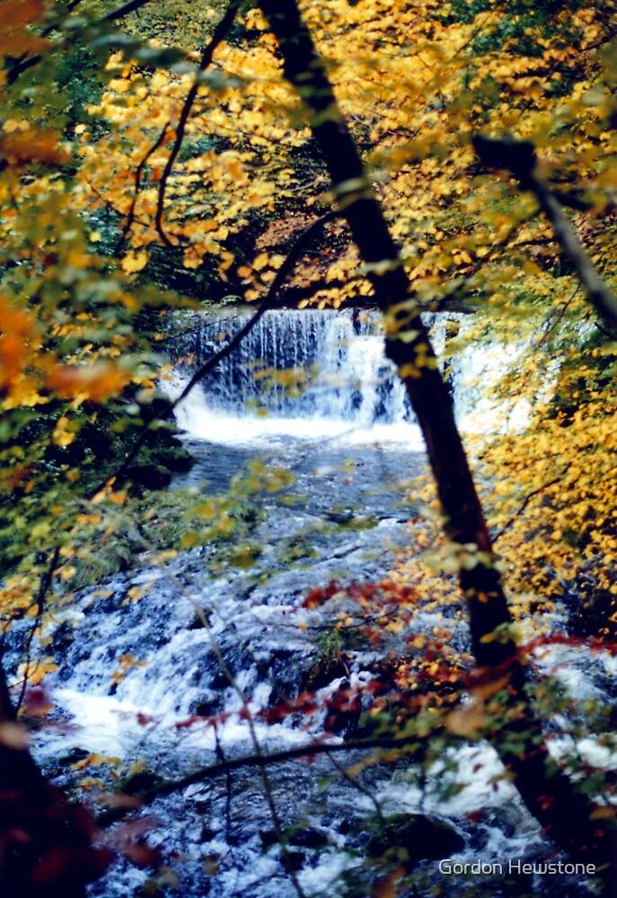 Stock Ghyll in Autumn by Gordon Hewstone
