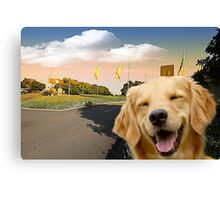 A Forster Smile Canvas Print