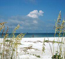 Ft. Dasota Beach, Fl. / Jack Boyd by JackBoyd