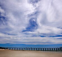 Beach and Pier Landscape by jwwallace
