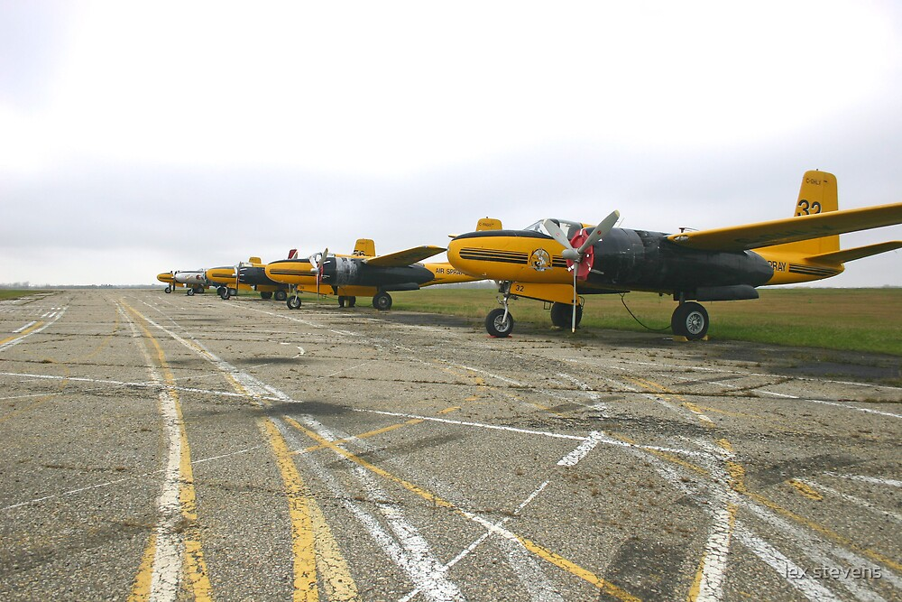 planes at peace by lex stevens