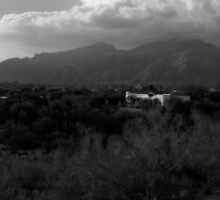 tucson, az by sean elliot